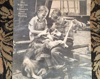 1940/1941 checkerboard news