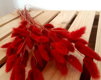 Bright Red Dried Bunch, Dried Flowers, Preserved Bouquet, Dry Wedding Bouquet, Alternative Bouquet, Boho Bouquet, Red Bunny Tail Grass