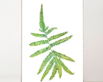 Fern Leaf Print, Fern Print, Botanical Fern Leaf Print, Leaf Isolated, Plant Print Decor, Watercolor Fern, Fern Wall Art, Fern Wall Print