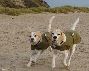 Made to measure tweed dog coat