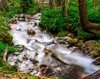 Mountain Stream, Montana, Landscape Photography, Nature Photography, Fine Art Photography, Wall Art, Home Decor, Gift