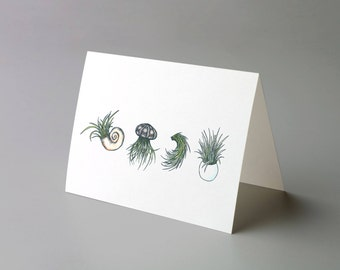 "Air Plant Quartet - 4.25"" x 5.5"" Greeting Card"
