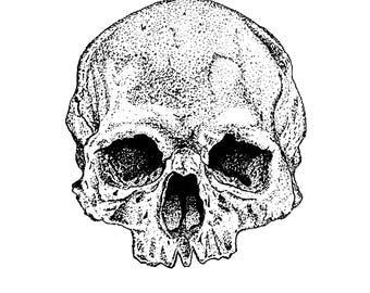 A5 Pointillism Skull Print