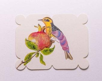 bird with pomegranate, original paper collage