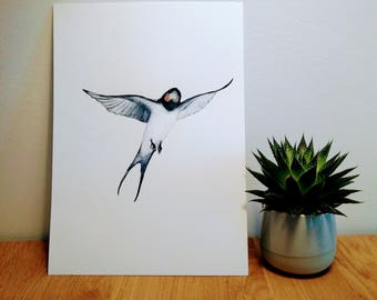 Watercolor Swallow, Bird, Painting, Handmade