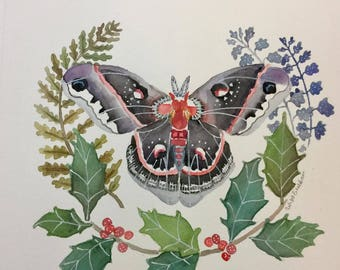 Moth and Holly