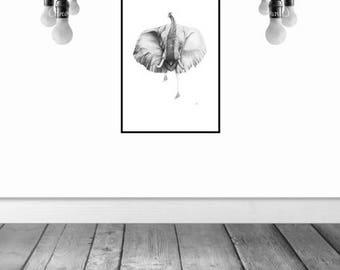 Elephant Graphite Pencil Sketch Print A3