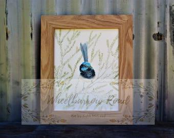 Blue Wren in Tea Tree