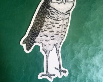 Nefarious Burrowing Owl Is Up to No Good vinyl die cut sticker