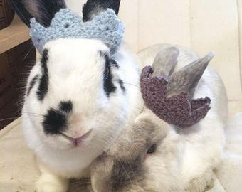 Crown for pet rabbit/ Pet rabbit accessories/ Costume for rabbit/ Bunny crown/ Crown for bunny/ Guinea pig costume/ Pet rabbit clothing