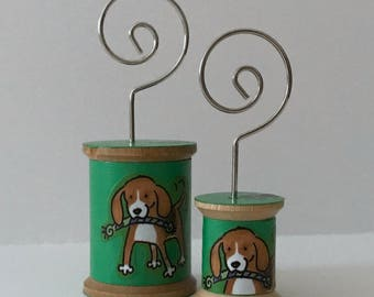 Beagle - Cool Spools