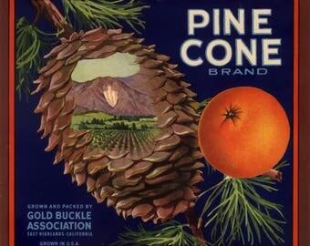 Original vintage citrus crate label 1930s Pine Cone Arrowhead East Highlands San Bernardino California