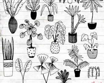 House Plant Clipart - Hand Drawn Plants Clipart - Potted Plant Art - Plant Digital Paper - Plants Clip Art - Plant Illustration - ACGABW06