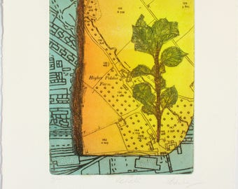 Colour Etching. Apple Orchard map. Hand printed Limited edition.