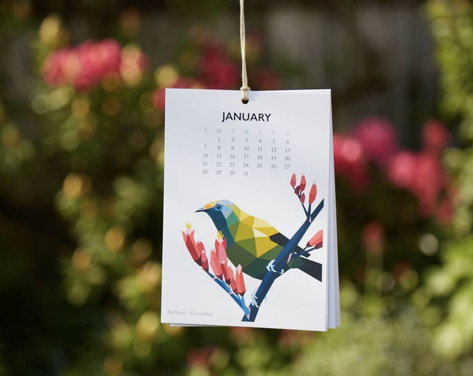 ON SALE New Zealand birds calendar, 2018 calendar, Kiwi bird calendar, Geometric calendar, Illustrated calendar, Kiwiana art, Wall calendar
