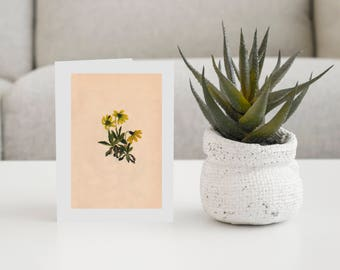 Lake Louise Arnica-Pkg of 6 Cards With Envelopes- Vintage Card-Any Occasion Card-Everyday Card-Collector Art Cards