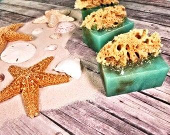 Island Coconut Soap - Glycerin Soap - Tropical Party Favor - Tropical Party Gift - Tropical Bathroom Decor - Sea Sponge Soap - Sea Sponge