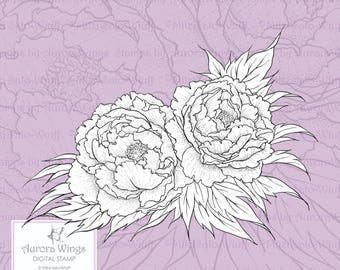 PNG Digital Stamp - Instant Download - Peony - Two Luscious Blooms with Leaves - Floral Line Art for Cards & Crafts by Mitzi Sato-Wiuff