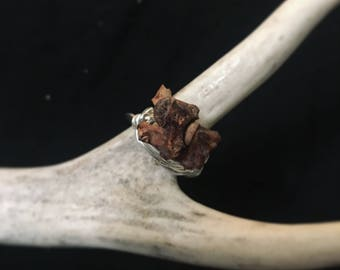 Double Snake Vertebrae Ring