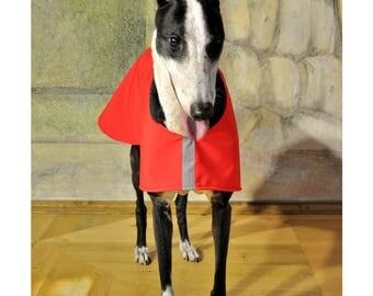 Light softshell jacket for greyhound/galgo/saluki/lurcher