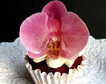 Edible Wafer Paper Pink Orchid Flower,Flat Cupcake or  Cookie Toppers, Set of 12