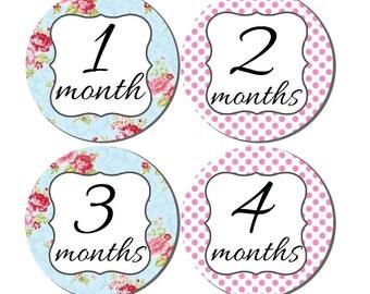 Milestone Sticker- Baby Month Stickers- Baby Girl Month Stickers- Monthly Stickers- 12 month stickers- Milestone Baby Month Stickers- G54
