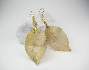 Leaf Earrings, Natures Leaf Jewellery, Natures Unusual Gift, Gold Leaf Earrings, Skeleton Leaves,  UK Jewellery Seller Handmade Earrings