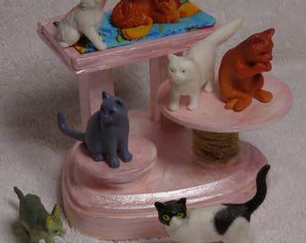 Barbie's Cat Rescue / Cat Foster home