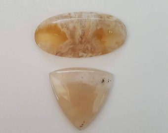 25 DOLLAR AGATE LOTS - Lot of 2 Plume Agates, Sizes Vary in mm, #25L3