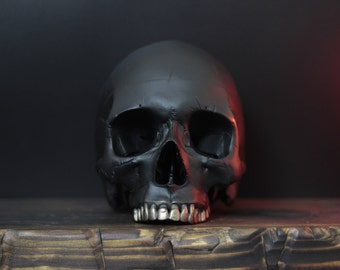 The Fools Goldsmith - Distressed Matte Black Life Size Realistic Faux Human Skull Replica with Antique Gold Teeth Detailing / Art / Ornament