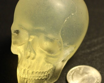 1/3 Resin Skull Cast (Amber)