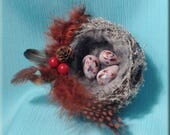 Decorative White Flocked Bird Nest with Yellow Hammer Finch Eggs - 3 inches