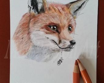 Postcard original Fox