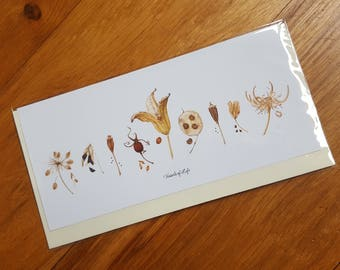 Greeting cards - 'Vessels of Life' - Seedheads