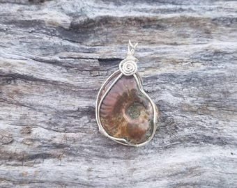 Ammonite pendant. Opalized ammonite or ammolite necklace.