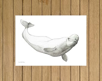 Beluga, Watercolor Illustration, Giclée Print, A4 or  A5 size