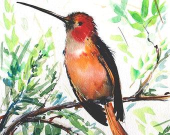 Original Hummingbird painting Original bird painting Small painting Bird art Original colibri painting Living room decor Bird pictures