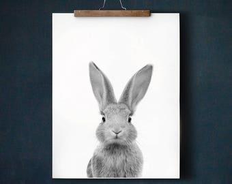 Rabbit print, PRINTABLE art, Nursery art, Black and white, Nursery decor, Animal art, Baby animals, Nursery wall art, Bunny print, Kids art