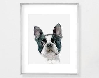 Genial Boston Terrier, Dog Print, Dog Art, Dog Lover Art, Animal Lover Gift