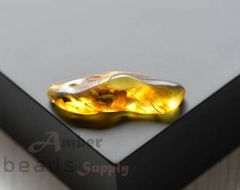 Baltic amber stone. Natural amber piece. Polished amber. Amber with insect. Insect stone. 2520/23