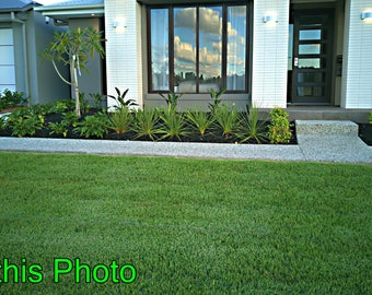 DJI-010000-Landscaping Photo | Garden New Home | Buy This Photo Here  | Ideal for Website, Promotion, Editioral , advertising, promotion,