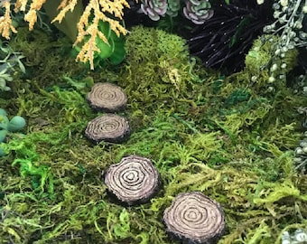 Miniature Tree Stump Stepping Stones - Set of 4