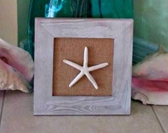 Starfish Wall Decor