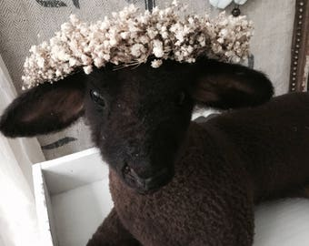 Vintage lamb, antique lamb, taxidermy, from france