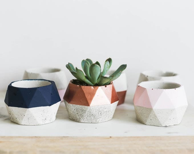 Wide Geo Planter: Varying Colors