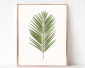Printable Wall Art Prints, Instant Download Printable Art, Palm Leaf Print, Digital Print, Digital Download, Anthropologie Print