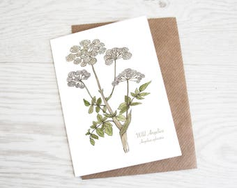 Wild Angelica, A6 Botanical Wild Herb Greeting Card