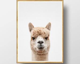 Alpaca Print, Nursery Animal Art, Nursery Animal Decor, Alpaca Wall Art, Nursery Animal Print, Nursery Decor, Nursery Art Print, Alpaca