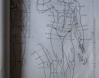Old antique book Gérald Audran about The proportions of the human body