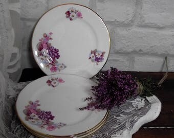 Vintage tea plates,set of vintage china plates,Gainsborough china plates,floral china plates,china tea plates,vintage china,set of plates